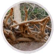 Eccentric Tree Root Growing In Ein Gedi Round Beach Towel