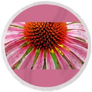 Echinacea Flower Upclose Filtered Round Beach Towel