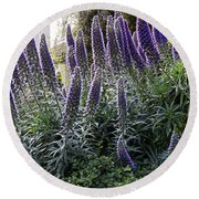 Echium And Tower Round Beach Towel