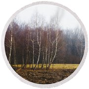 Edge Of The Forest Round Beach Towel