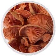 Edible Fungi 2 Round Beach Towel