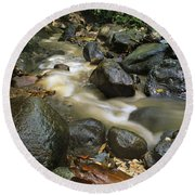 Edmond Forest Reserve On Saint Lucia Round Beach Towel