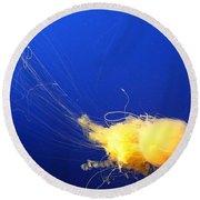 Egg - Yolk Jellyfish Round Beach Towel