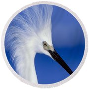 Egret 16 Round Beach Towel