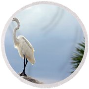 Egret And Tree Round Beach Towel