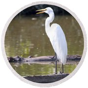 Egret Has A Lot To Say I Round Beach Towel