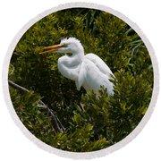 Egret In Bushes Round Beach Towel