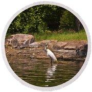 Egret In Central Park Round Beach Towel