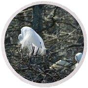 Egret In Full Display Lake Martin Louisiana Round Beach Towel