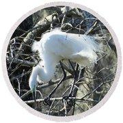 Egret In Lake Martin Swamp Louisiana Round Beach Towel