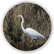 Egret In Marsh In Display  Round Beach Towel