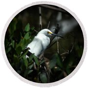 Egret Of Sanibel 5 Round Beach Towel