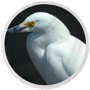Egret Of Sanibel 7 Round Beach Towel