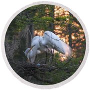 Egrets At Nest Round Beach Towel