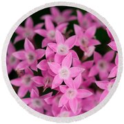 Egyptian Star Flowers Or Penta Round Beach Towel
