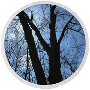 Elder Maple Silhouette Round Beach Towel