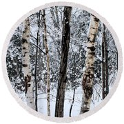 Elders In A High Country Grove Round Beach Towel