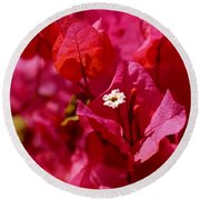 Electric Pink Bougainvillea Round Beach Towel