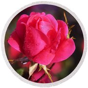 Electron Tea Rose Round Beach Towel