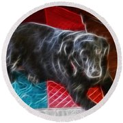 Electrostatic Dog And Blanket Round Beach Towel