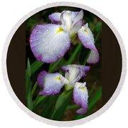 Elegant Purple Iris Round Beach Towel