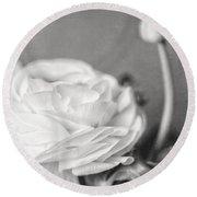 Elegant Ranunculus Flower In Black And White Round Beach Towel