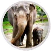 Elephant Baby Olli With Mommy Round Beach Towel