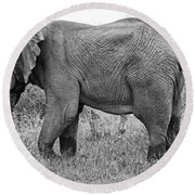 Elephant Bull In Black And White Round Beach Towel