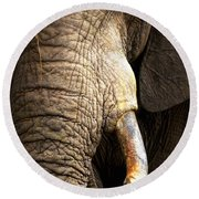 Elephant Close-up Portrait Round Beach Towel by Johan Swanepoel