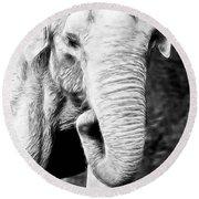 Elephant IIi Round Beach Towel