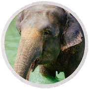 Elephant In Water Round Beach Towel