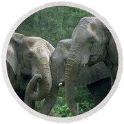 Elephant Ladies Round Beach Towel