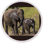 Elephant Mom And Baby Round Beach Towel