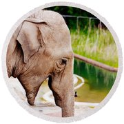 Elephant Open Mouth Round Beach Towel