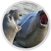 Elephant Seals - San Simeon California Round Beach Towel
