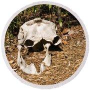 Elephant Skull Round Beach Towel