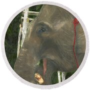 Elephant Under His Thumb Round Beach Towel