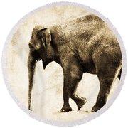 Elephant Walk Round Beach Towel