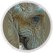 Elephant's Face Round Beach Towel