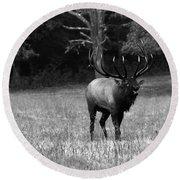 Elk In Black And White Round Beach Towel