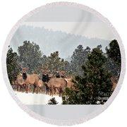 Elk In The Snowing Open Round Beach Towel