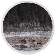 Elk Landscape Round Beach Towel