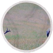 Elk On The Plains 1 Round Beach Towel