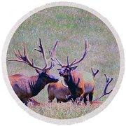 Elk On The Plains 2 Round Beach Towel