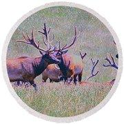 Elk On The Plains 3 Round Beach Towel