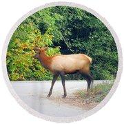 Elk Right Of Way Round Beach Towel