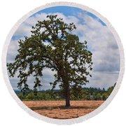 Elm Tree In Hay Field Art Prints Round Beach Towel