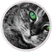 Emerald Eyes Cat  Round Beach Towel