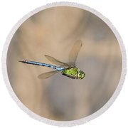 Emperor Dragonfly Round Beach Towel