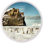 Emperor Penguin Colony Cape Washington Antarctica Round Beach Towel